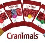 "Cranimals Pet Supplements- behind the scenes / Meet Cranimals Canine CEO, Charlie on her behind the scenes adventures. Discover how she mixes Cranimals supplements with her meals and get a ""behind the scenes"" look at your favourite organic pet supplement brand, Cranimals."