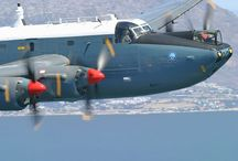 AVRO SHACKLETON - SAAF