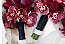 Deep burgundy and blue wedding ideas / by Antonia Christianson Events