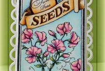 Spellbinders In Bloom / by Beate Johns
