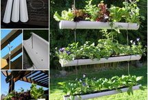 Recycling & Container Gardens