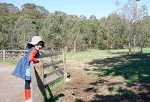 Childrens Farms - Melbourne