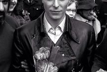 Bowie ⚡️