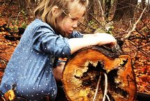 NATUREPLAY: forest schools