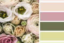 Συνδιασμοι χρωματων