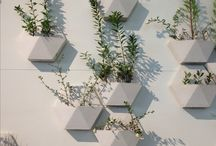 Plants and Design