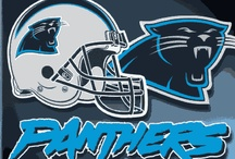 Panthers / by Michelle Youngblood