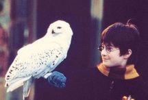 Harry Potter Referanse