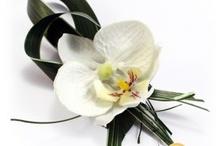 Mariage Orchidées - Orchid Wedding / mariage thème orchidée orchid wedding theme / by Artesa Créations