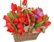 Flori de 1 si 8 Martie / Flori de 1 si 8 martie cu livrare gratuita in Bucuresti - http://www.floricudrag.ro/53-flori-de-1-8-martie