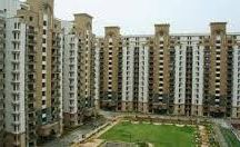 RPS Palms / RPS GROUP presents RPS Palms Floors | Apartments in Faridabad. Call us to Buy | Sell | Book RPS Palms Floors in Faridabad
