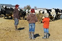 Life on the Farm / Love everything about farm life!! It's a perfect picture!!