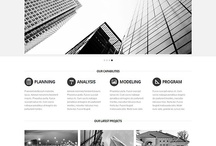 An eye-catching collection of templates for you / by FlashMint - Flash Website Templates