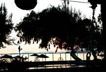 marmara adası gül pansiyon / (0266)8958011