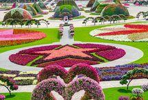 Park i ozdoby z kwiatów i zieleni