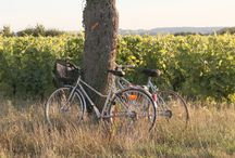 Idées séjours / Retrouvez toutes les idées séjours sur notre site : http://www.vendome-tourisme.fr/circuits-et-sejours/nos-sejours
