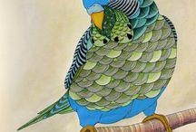 Coloring: Millie Marotta