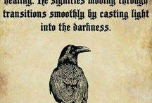 ravens and animal spirits