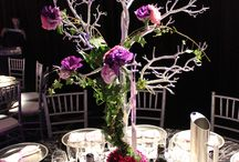 Doltone Wedding Inspiration