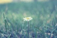 My work Art Photography