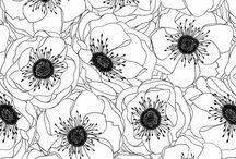 Prints/Patterns / by Teresa Jackson