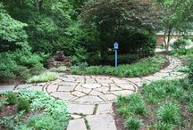Projects by Garden Design by Tiz / Here are some photos of my designs.