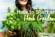 Grow your own
