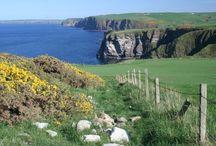 Moray Firth Scotland / by Johanna Campbell