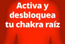 activa chacras