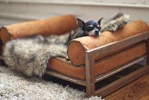 Dog Beds - Designer