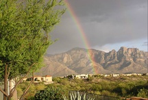Sun City Oro Valley_Homes & Neighborhoods / Take a look at active adult living at Sun City Oro Valley