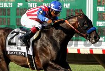 Haskell Day at Monmouth Park 7/27/2014 / View images from the stacked card at Monmouth Park July 27 which was capped with Bayern's exciting win in the Haskell Invitational. / by The Blood-Horse