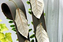 All foliage