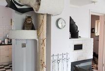 Kocie mieszkanie