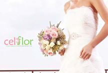 Bouquet / For your dream wedding