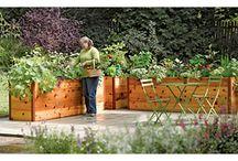 In my garden / by Nancy Prucha