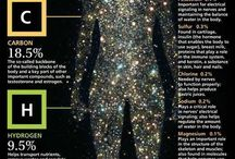 Human body ingrednts