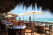 Pour vous faire rêver... / Plusieurs hôtels, plages, piscines, restaurants et activités pour vous faire rêver!