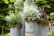 Container Gardens: Spring + Summer / Our favorite plants, colors, and silhouettes for this season's warm weather planters.
