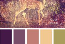 Cочетание цвета