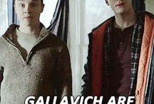 Gallavich<3