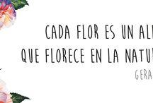 Con Flores y con Amor