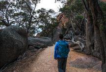 Humans - Bush Walking/Hiking