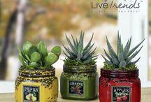 Artsy Mini Jar Planters