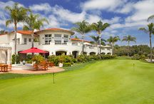 Local Best 5 Star Hotels in California / 5 Star Hotels & Where To Save While Being Pampered!