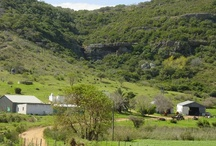 Farms in South Africa