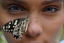 INCREDIBLE IMAGES / by Sarah Stefek