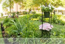 Loring-Greenough House Wedding Photography