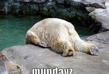 I ♥ Mondays! Not.