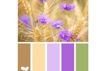 Colores / Paleta de colores, ideas para combinar colores.